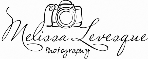 Melissa Levesque Photography logo